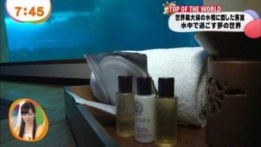 【鈴木ちなみ】Eカップ11 世界最大級の水族館&ウォータースライダー!水着姿で濡れちゃいます!
